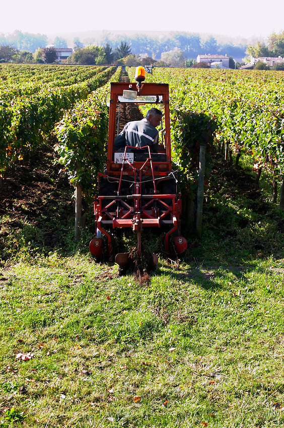 tractor ploughing the soil vineyard chateau la dauphine fronsac bordeaux france