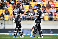 3rd November 2019, Wellington, New Zealand;  Blackcaps batsman Tim Southee and Jimmy Neesham pump gloves during the second T20 International game between New Zealand and England, Westpac Stadium, Wellington, Sunday 3rd November 2019.  - Editorial Use