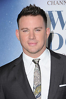06 November  2017 - Los Angeles, California - Channing Tatum. &quot;War Dog: A Soldier's Best Friend&quot; Los Angeles premiere held at Director's Guild of America in Los Angeles. <br /> CAP/ADM/BT<br /> &copy;BT/ADM/Capital Pictures