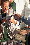 Female volunteer carry juvenile flamingo after it was examined by vets and had a leg ring attached, during the annual ringing event at Fuente de Piedra lagoon in Andalucia,Spain