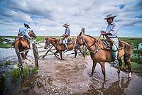 Ibera Wetlands (Esteros del Ibera), Argentina