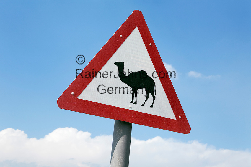 United Arab Emirates, Dubai: Camel crossing road sign