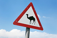 United Arab Emirates, Dubai: Camel crossing road sign
