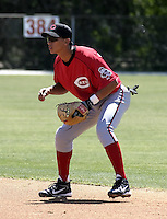 March 31, 2004:  William Bergolla of the Cincinnati Reds organization during Spring Training at Ed Smith Stadium in Sarasota, FL.  Photo copyright Mike Janes/Four Seam Images