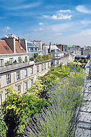 View over the lushly planted flowerbeds of this roof garden which features a weathervane in the shape of a bulldog
