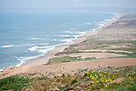 Point Reyes National Seashore, California; Point Reyes Beach with large, afternoon waves, viewed from the bluff at Point Reyes Lighthouse