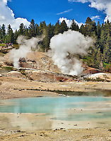 Fumaroles release steam in Norris Geyser Basin.