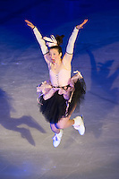 Nutcracker on Ice 12-13-14