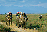 Tourists on elephants in Royal Chitwan National Park, Nepal