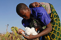 AFRICA organic and fair trade cotton