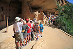 Visitors at the Spruce Tree House ruins at Mesa Verde National Park, Colorado, USA