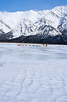 Scott White runs his team out of  the Rohn checkpoint at the confluence of the Tatina and the South Fork of the Kuskokwim Rivers during the 2010 Iditarod