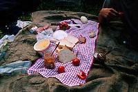 ROMANIA / Maramures / Budesti / September 2006..Lunch while haymaking in the fields above Budesti...© Davin Ellicson / Anzenberger