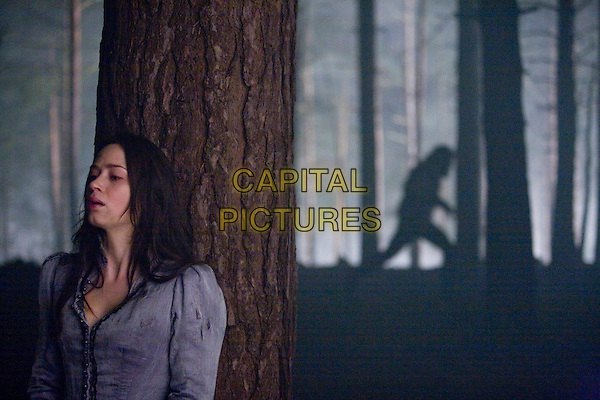 EMILY BLUNT.in The Wolfman .*Filmstill - Editorial Use Only*.CAP/FB.Supplied by Capital Pictures.