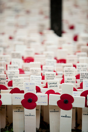 07/11/2012. London, UK. Crosses with poppies bearing messages are seen in the Field of Remembrance at Westminster Cathedral in London today (07/11/12). Photo credit: Matt Cetti-Roberts
