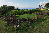 Hawaiian burial plot (heiau) near Hana at the Ohe'o Gulch  in the HALEAKALA NATIONAL PARK on Maui in Hawaii USA