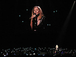 'Barbra Streisand Back To Brooklyn' - performance at the United Center in Chicago 10/26/2012