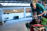 Emily Ferguson, a volunteer nurse with Project HOPE from Boston, Massachusetts, gets a cholera patient set up with a fresh I.V. bag for hydration at the Hospital Albert Schweitzer on Thursday, October 28, 2010 in Deschapelles, Haiti.