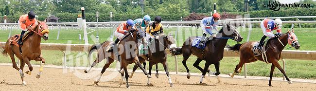 Goodnight Angel winning at Delaware Park on 7/16/14