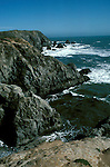 California, CA, Sonoma Coast, Bodega Head dunes.  .Photo cabeac203..Photo Copyright: Lee Foster, www.fostertravel.com, 510-549-2202, lee@fostertravel.com