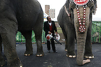 """NEW YORK - JUNE 19: Susie the elephant gets a bath from her trainer Ramon Esqueda before performing in """"Ringling Bros. Barnum and Bailey's The Coney Island Boom A Ring"""" Circus on Friday, June 19, 2009 in Coney Island, New York. (Photo by Landon Nordeman)"""