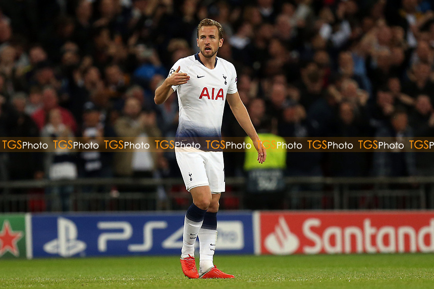 Harry Kane of Tottenham Hotspur celebrates scoring the first Spurs goal during Tottenham Hotspur vs FC Barcelona, UEFA Champions League Football at Wembley Stadium on 3rd October 2018