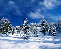 Germany, Bavaria, Upper Bavaria, Werdenfelser Land: Winter scenery near Kruen | Deutschland, Bayern, Oberbayern, Werdenfelser Land: Winterlandschaft bei Kruen