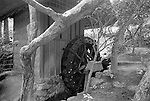 Water Wheel in Nara Garden