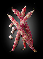Fresh picked borlotti beans  also known as the cranberry bean or Roman bean
