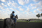 Keeneland 2011: Early morning practice