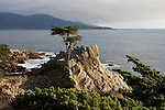 Lone Cypress on 17 Mile Drive