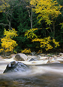 Sawyer River in the White Mountains, New Hampshire USA during the autumn months.