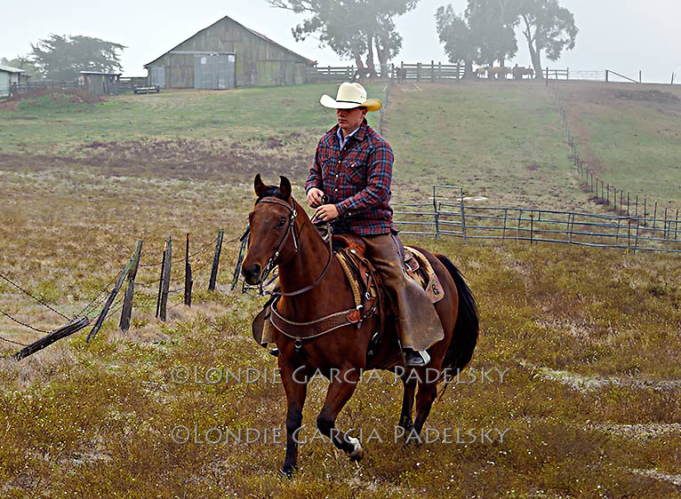 Clearing fog, cowboy rides the ranch in San Luis Obispo, California