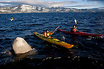 Harry King, in yellow kayak, and Julio Ayala, in red kayak, kayak on Lake Tahoe near Kings Beach, Calif., January 19, 2011.