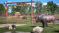"The Buffalo Ranch, a truck stop built on the site of an old Route 66 tourist trap in Afton Oklahoma that once featured ""the world's only trained buffalo."""