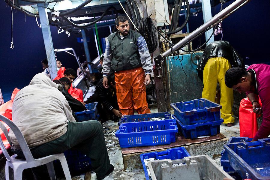 Gaza sea: when the net is completly pull out, the fishermen put them on the floor of the boat and sort them out by types. <br /> <br /> Mer de Gaza: quand le filet est compl&egrave;tement tir&eacute;, les p&ecirc;cheurs mettent les poissons sur le sol du bateau afin de les trier par types.