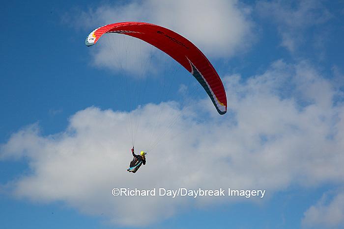 62995-00602 Hang Glider at Torrey Pines Gliderport La Jolla, CA