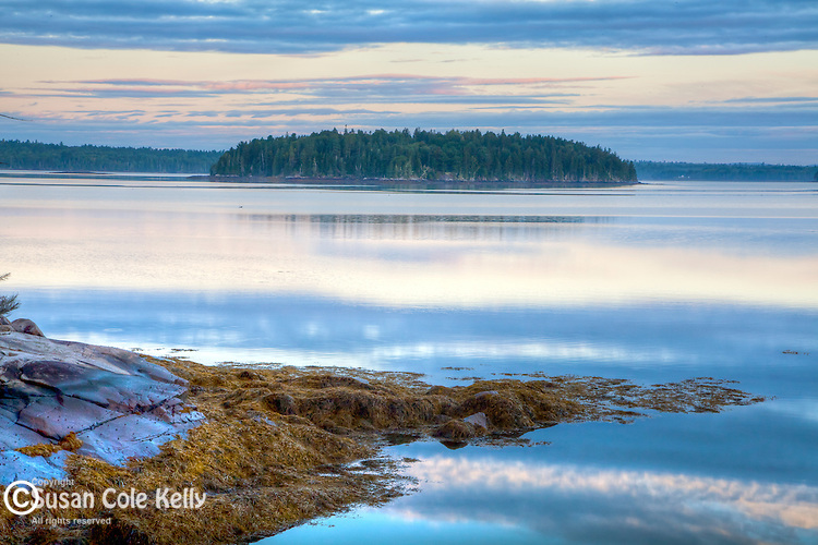 Morning on Taunton Bay, Hancock County, ME, USA
