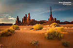 The incredible Totems in Monument Valley bathed in golden light.