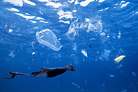 The world's oceans are increasingly subject to pollution of many kinds, including vast amounts of plastic trash. A sad result is death to large numbers of turtles, birds and fish that ingest scraps of plastic, which they mistake for their normal prey of jellyfish and similar creatures. Andaman Sea.