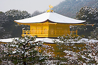 Kyoto City, Japan<br /> Kinkakau-ji Temple (Rokuan-ji), the Golden Pavilion in winter with snowy hillside forest, a World Cultural Heritage site