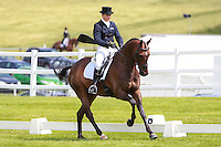 09-2016 GBR-Barbury Castle International Horse Trial