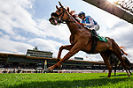 MAY 27: Ahimsa with Brice Blanc races in the Gamely Stakes at Santa Anita at Santa Anita Park in Arcadia, California on May 27, 2019. Evers/Eclipse Sportswire/CSM
