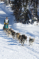 Jeff King on Long Lake at the Re-Start of the 2012 Iditarod Sled Dog Race