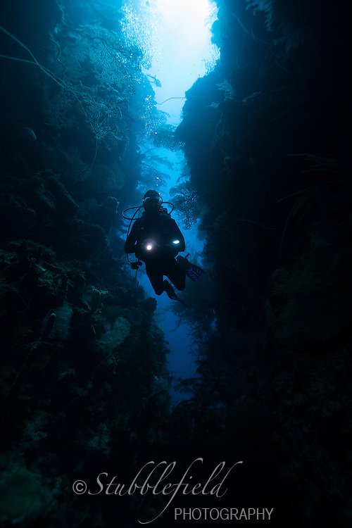 Scuba diver Elyn Stubblefield exploring a crack with a flashlight at Mary's Place off the island of Roatan, Honduras.