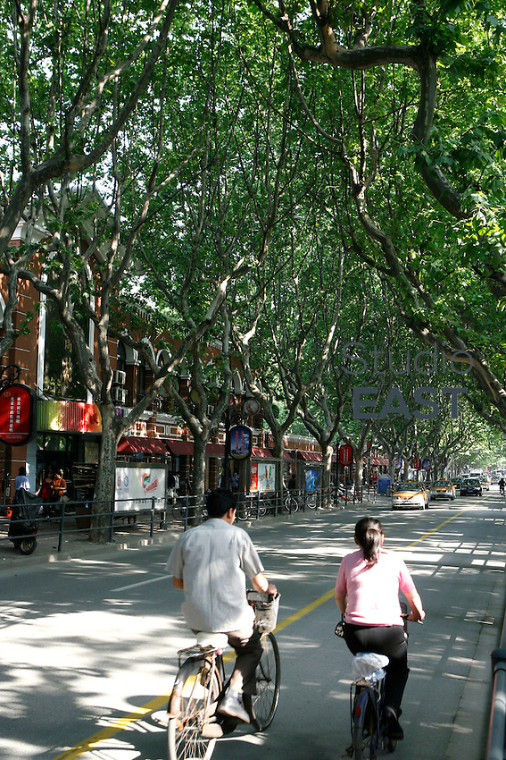 People stroll under plane trees in the French Concession in Shanghai, China, on May 10, 2008. Photo by Lucas Schifres/Pictobank