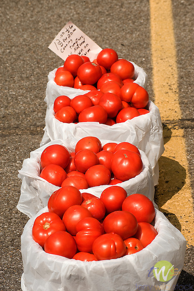 Bulk Tomatoes for making sauce.