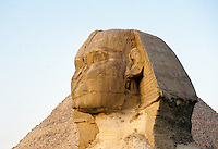 The Sphinx, Giza Plateau, near Cairo, Egypt