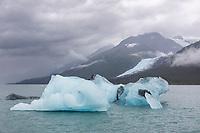 Blue iceberg floats in College Fjord, Prince William Sound, Alaska.
