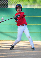 AA REDS ACTION 5